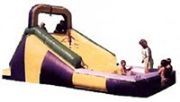 Backyard Slides